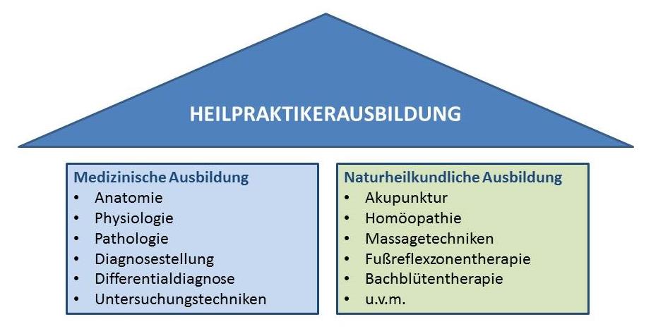 Heilpraktikerausbildung - Inhalte